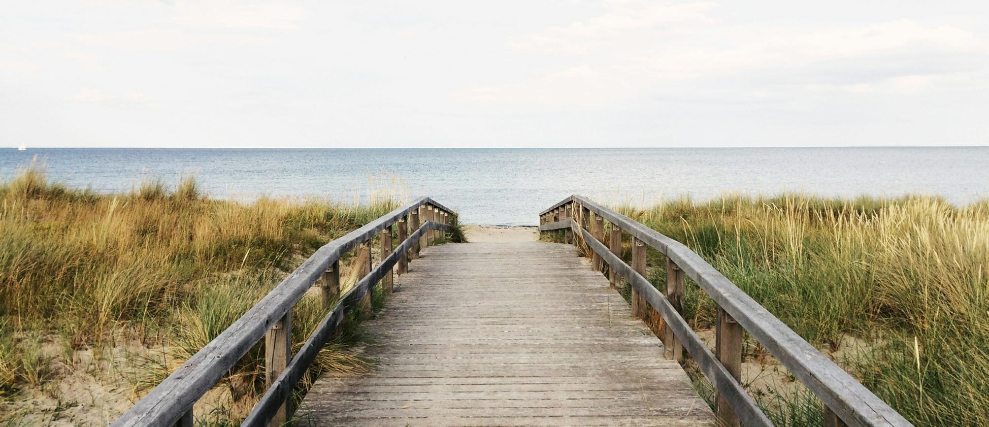 Strand duinen